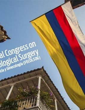 13th AAGL International CongressOn Migs
